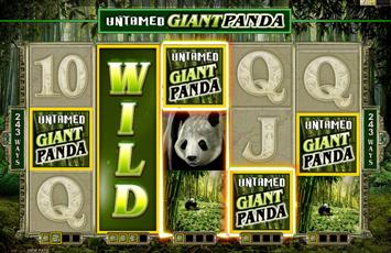 MicrogamingS Untamed Wild Panda No Download Slots